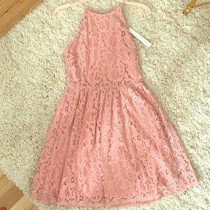 NEW Aqua Pink Lace High Neck Skater Dress Xs
